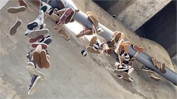 廢棄滑板鞋高掛非亂丟?愛好者:象徵對滑板熱愛