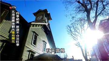 整年都有景點 北海道推「札幌白色燈樹節」
