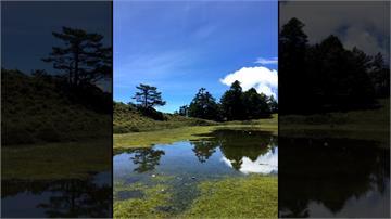 不輸嘉明湖!「嘉明妹池」天然美景吸上百登山客造訪