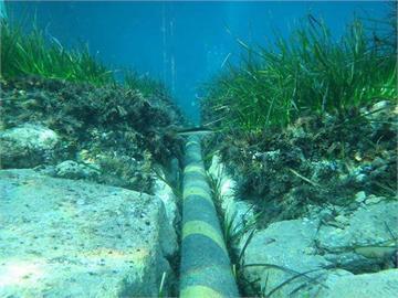 美日澳將合作新設海底電纜 加強抗中