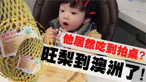 天價也要買!人妻移民澳洲盼到台灣鳳梨 寶寶吃一口「好吃到拍桌」