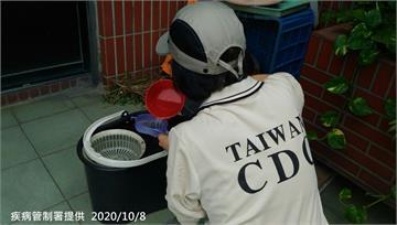 快新聞/新北三峽本土登革熱群聚再增1例 30多歲男子發燒關節痛確診