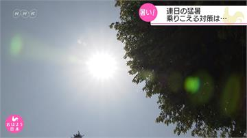 日本發高燒!愛知縣推「共涼」減少能源消耗