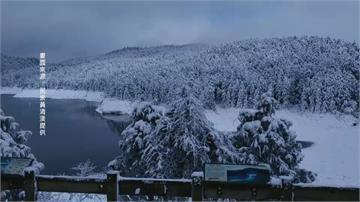 無敵雪景就在太平山 遊客驚呼一秒到北海道