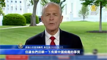批中國人搭機到全球散播病毒 白宮貿易顧問:他們應該為此負責