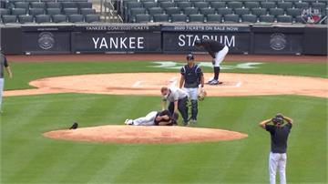 MLB/田中遭強襲球砸頭後架護網 洋基避免投手春訓再傷