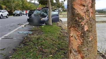 載全家出遊疲勞駕駛 撞上路樹翻車4輕傷