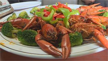 苗栗大閘蟹市場熱度退燒  改養小龍蝦水質好產量佳
