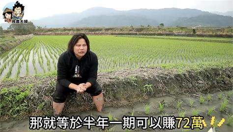 解密農夫薪水! 一甲地種水稻可以賺「這樣」