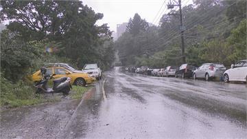有沒有這麼濕?北台灣下雨下到發霉 汐止汽車擋風玻璃溝槽長出小草