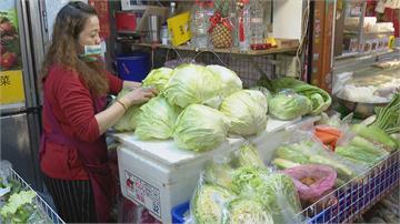 直逼成本價!高麗菜盛產過量價格大跌