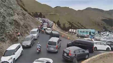上千車擠爆合歡山! 搶看高山杜鵑亂象多