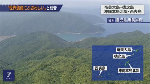 賀!日本奄美大島等可望7月正式登記為聯合國世界自然遺產