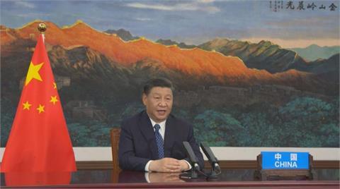 中共百年黨慶重提「叛黨滅門案」?前中共黨校教授:山雨欲來、政局恐失控