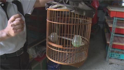 男子飼養「二級保育野生鳥類」 被判拘役15天