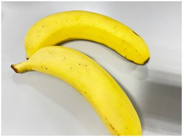 香蕉買回家很快變黑?專家曝溫度是重點「這樣做」保存更久