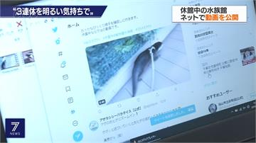 三天連假碰疫情 日本商家想出「另類」度假法