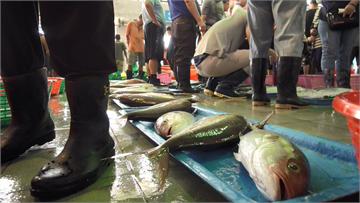 【預告】以「安全食魚」的堅持提升水產競爭力 高雄蚵仔寮漁港獲國際認證|土地的微笑