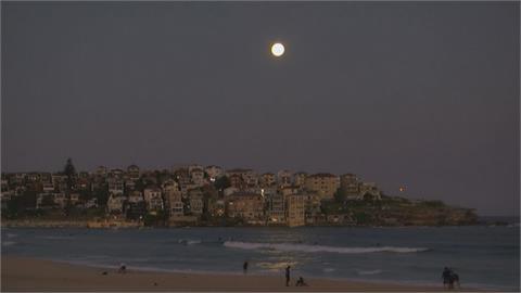 超級月亮高高掛 雪梨民眾海灘賞美景
