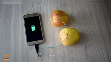 香蕉、蘋果能發電?理化老師實測曝真相