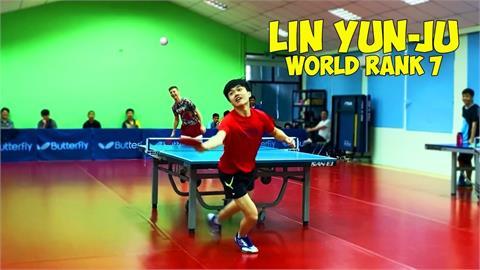 林昀儒「右手持拍」應戰!世桌總會賽評陷苦戰 極佳球感驚豔全場