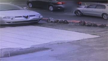 酒駕遇警心虛逃逸 撞車遭逮意外揪通緝犯