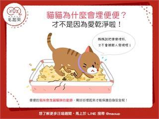 【貓貓行為學】貓貓為什麼會埋便便?才不是因為愛乾淨啦!|寵物愛很大