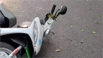 北市女騎共享機車自摔 飛對向車道遭大貨車輾斃