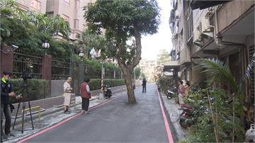 芒果樹擋道成路霸 市府要砍樹得花3800萬