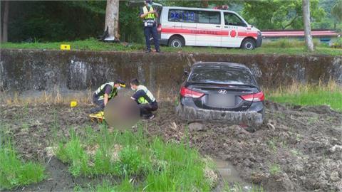 轎車自撞行道樹墜2米深稻田 駕駛自行脫困癱軟田中
