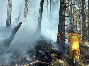 玉山森林大火延燒12天終於滅了 林務局:鉅額成本絕對求償