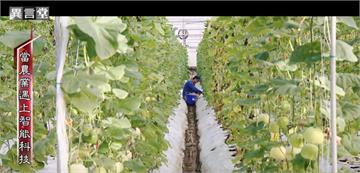 異言堂/減輕農事負擔!當物聯網和農業結合