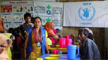 全球/後疫情時代新危機!全球飢餓人口破8億大關