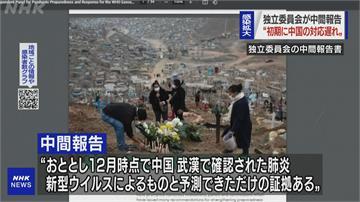 世衛獨立小組調查武肺 直指中國拖延害全球