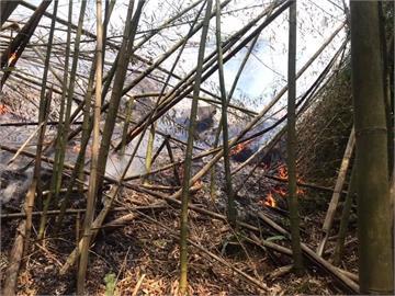 阿里山達邦公路邊坡又火警 靠近18日起火點