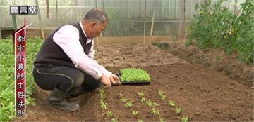 異言堂/有機農業正夯 都市小農的生存法則