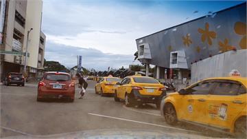 苗栗白牌車違法營業 駕駛被逮挨罰十萬