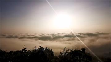 海拔250M也有雲海!高雄最美後花園小崗山絕美景色曝光