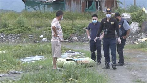 壽豐鄉近500顆大西瓜 一夜之間全被偷走