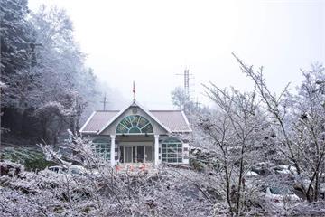 快新聞/向陽山下雪了! 山區「撒糖霜」變銀白世界超美