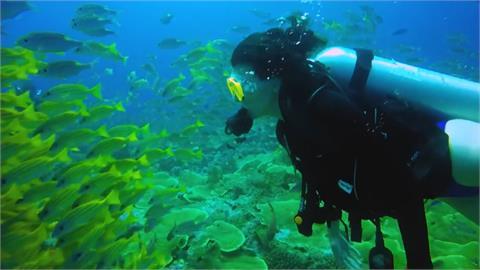 帛琉旅遊泡泡最快3月中定案 擬採團進團出、回台居檢5天採檢