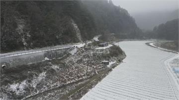 思源埡口下雪、武陵有霧淞全台獨一無二美景!