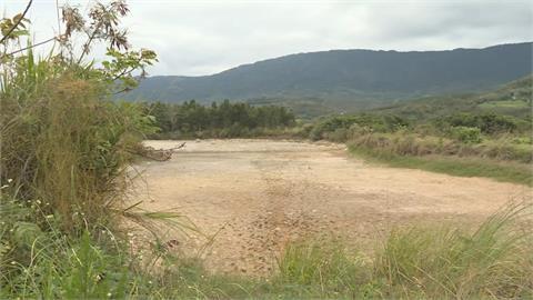 太乾!池上富興濕地剩2小窪地 生態受衝擊