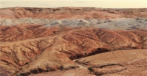 2000萬年前「短面猬化石」內蒙古出土!科學家驚與北美「親戚」更密切