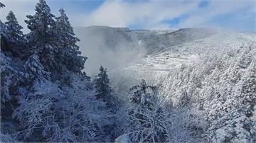 太平山積雪15公分 賞雪民眾暴量午後禁入園
