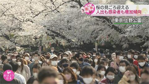 日本首都圈解封滿一週 各地湧現賞櫻人潮