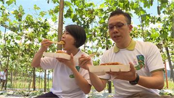 夏季絲瓜正對時!頭社農民推「瓜棚野餐宴」