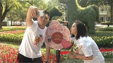花博情人節活動連4天!拍照打卡可獲整束玫瑰花