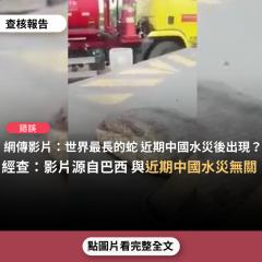 事實查核/【錯誤】網傳影片:「世界最長的一條蛇,在中國因洪水引起山崩出現,被在地人發現」?