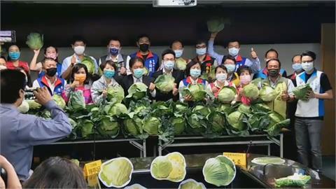 台南市議會攜手企業助農民!  收購9萬斤高麗菜免費送